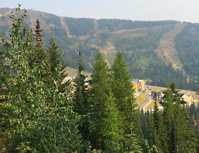 Sandpoint Residential Lots & Land For Sale: Nna Mogul Hill Rd
