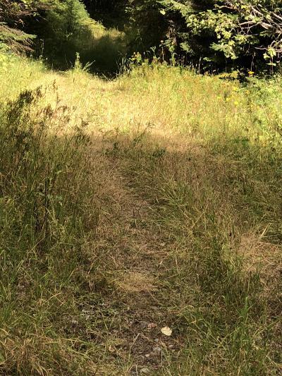 Sandpoint Residential Lots & Land For Sale: NNA N Elk Grove Road