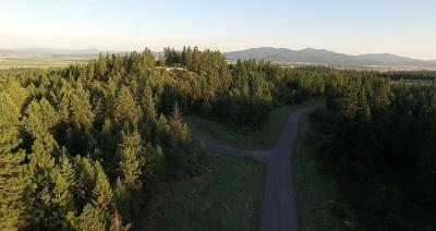 Rathdrum Residential Lots & Land For Sale: L13B5 N Spiral Ridge Trl