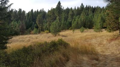 Coeur D'alene Residential Lots & Land For Sale: NNA S Wolf Lodge Terrace Rd