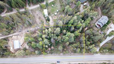 Priest Lake Residential Lots & Land For Sale: Lot 4 Hills Lots Kalispell Bay Rd