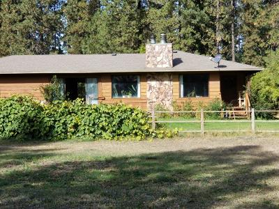 Rathdrum Single Family Home For Sale: 15228 N Ramsey Rd