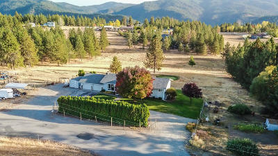 Coeur D'alene, Dalton Gardens Single Family Home For Sale: 3429 S Vista Loop