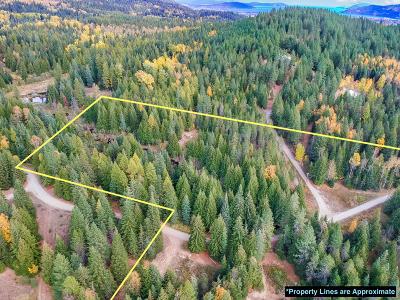Sandpoint Residential Lots & Land For Sale: 397 Larsen Ranch Ln