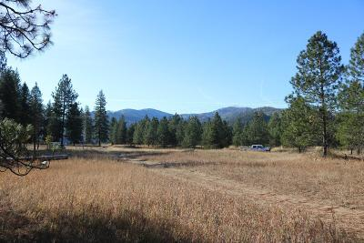 Sandpoint ID Residential Lots & Land For Sale: $50,000