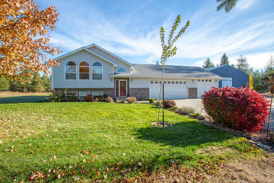 Rathdrum Single Family Home For Sale: 1481 E Diagonal Rd