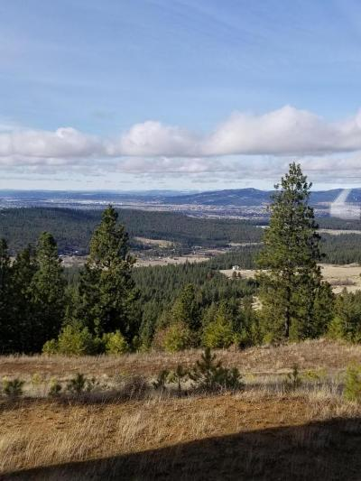 Post Falls Residential Lots & Land For Sale: NkA Big Rock Rd.