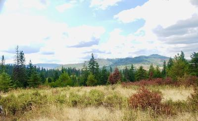 Benewah County Residential Lots & Land For Sale: Tract 4 Hidden River Vistas