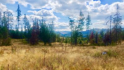Benewah County Residential Lots & Land For Sale: Tract 5 Hidden River Vistas