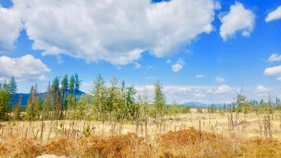 Benewah County Residential Lots & Land For Sale: Tract 6 Hidden River Vistas