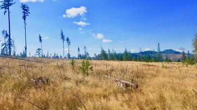 Benewah County Residential Lots & Land For Sale: Tract 8 Hidden River Vistas