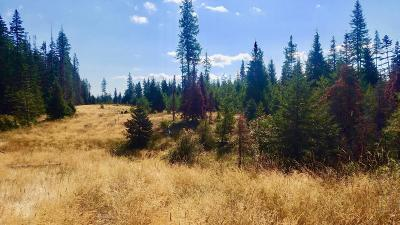 Benewah County Residential Lots & Land For Sale: Tract 10 Hidden River Vistas