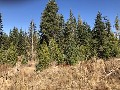 Benewah County Residential Lots & Land For Sale: Tract 12 Hidden River Vistas