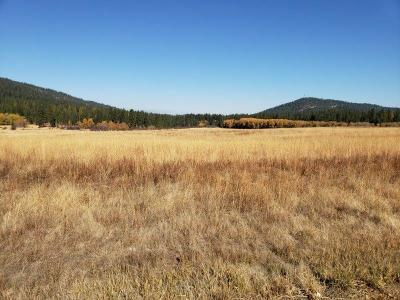 Worley Residential Lots & Land For Sale: NNA Hwy 95/County Line Rd