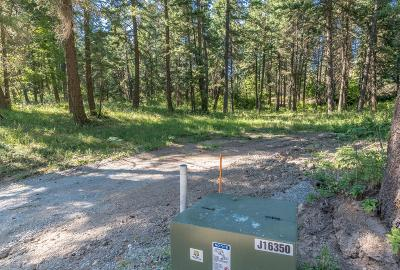 Coeur D'alene Residential Lots & Land For Sale: NKA Alina Drive (Lot2)