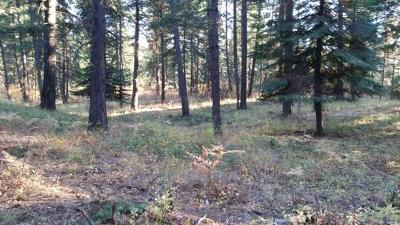 Coeur D'alene Residential Lots & Land For Sale: NKA Alina Drive (Lot 1)