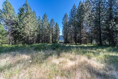 Coeur D'alene Residential Lots & Land For Sale: NKA Alina Drive (Lot 8)