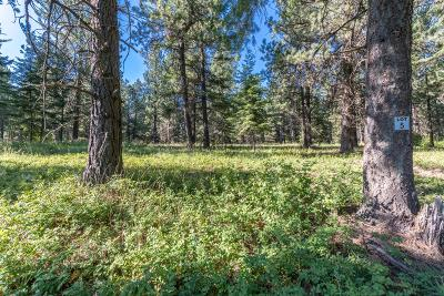 Coeur D'alene Residential Lots & Land For Sale: NKA Alina Drive (Lot7)