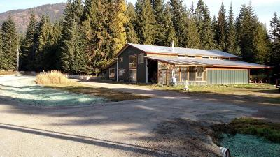 Clark Fork Single Family Home For Sale: 166 Cherry