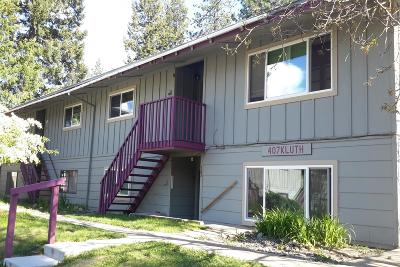 Priest River Multi Family Home For Sale: 407 Kluth Street
