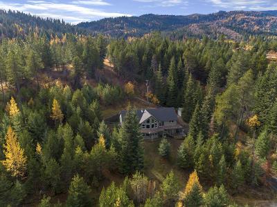Coeur D'alene, Dalton Gardens Single Family Home For Sale: 10352 W Lynx Trl