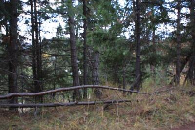 Coeur D'alene Residential Lots & Land For Sale: NNA Springview/Galena Dr #15853