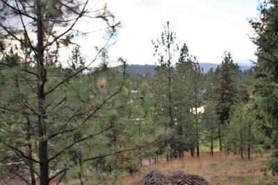 Coeur D'alene Residential Lots & Land For Sale: NNA Springview/Galena Dr. #15852