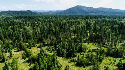 Priest River Residential Lots & Land For Sale: NNA Bear Paw Road, Lot C