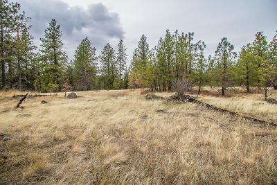 Spokane Residential Lots & Land For Sale: 3813 appx S San Diego Rd