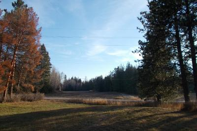 Sandpoint Residential Lots & Land For Sale: 10148 & 10150 West Pine Street