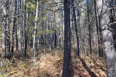 Bonners Ferry Residential Lots & Land For Sale: NNA Hwy 95