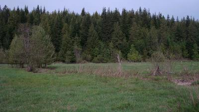 Clark Fork Residential Lots & Land For Sale: Lot 2 Shadow Valley Lane