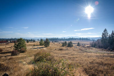 Coeur D'alene Residential Lots & Land For Sale: XX Loffs Bay Rd