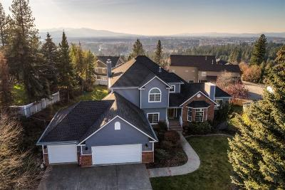 Coeur D'alene Single Family Home For Sale: 2434 E Summit Dr