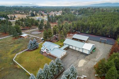 Rathdrum Single Family Home For Sale: 17841 N Wrangler Road