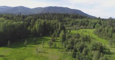 Sandpoint Residential Lots & Land For Sale: NNA Pine Street