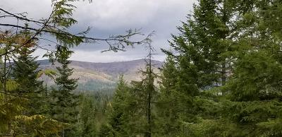 Benewah County Residential Lots & Land For Sale: Alder Creek Sub, Tract 46