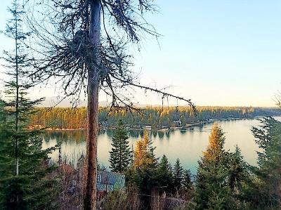 Hayden Residential Lots & Land For Sale: 2598 E Upper Hayden Lake Rd