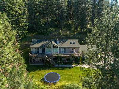 Coeur D'alene, Dalton Gardens Single Family Home For Sale: 2835 S Reynolds Rd