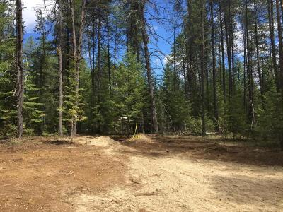 Priest Lake Residential Lots & Land For Sale: 251 Williams Dr