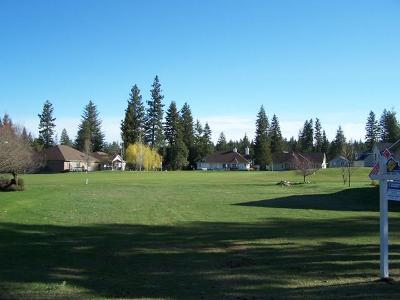 Rathdrum Residential Lots & Land For Sale: NKA Village Blvd
