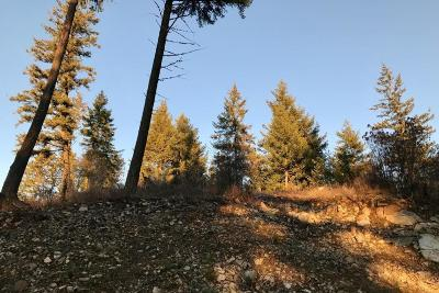 Sandpoint Residential Lots & Land For Sale: D-12 Whitecloud Drive