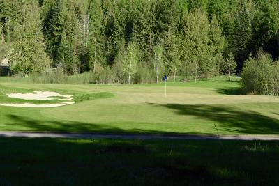 Sandpoint ID Residential Lots & Land For Sale: $95,000
