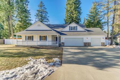 Hayden Single Family Home For Sale: 13089 N Ferndale Drive