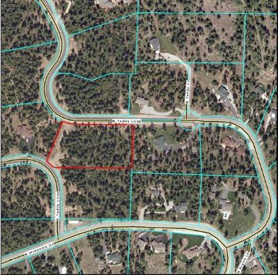 Rathdrum Residential Lots & Land For Sale: Lt 2 Blk 4 Teddy Loop