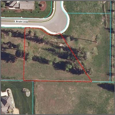 Hayden Residential Lots & Land For Sale: 1506 E Bruin Loop