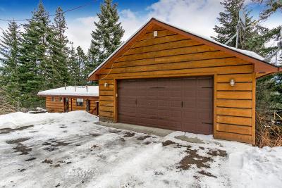 Hayden Single Family Home For Sale: 36497 E Hayden Lake Rd