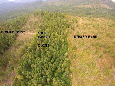 Sandpoint Residential Lots & Land For Sale: NKA Williamson Way ( 10 Acres )