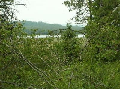 Newport Residential Lots & Land For Sale: 323xxx Us Hwy 2