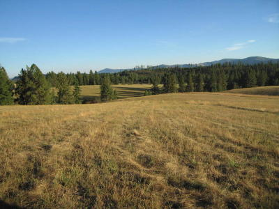 Benewah County Residential Lots & Land For Sale: Nka Hells Gulch
